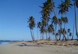 Dominikanischen Republik